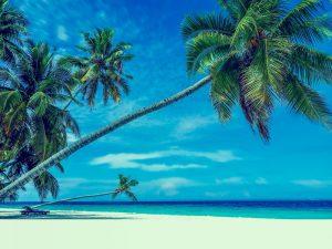 Sommer, Sonne und Relaxen - genießen Sie unseren Sommertraum-Schönheitstag